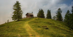 investissement-tiny-house